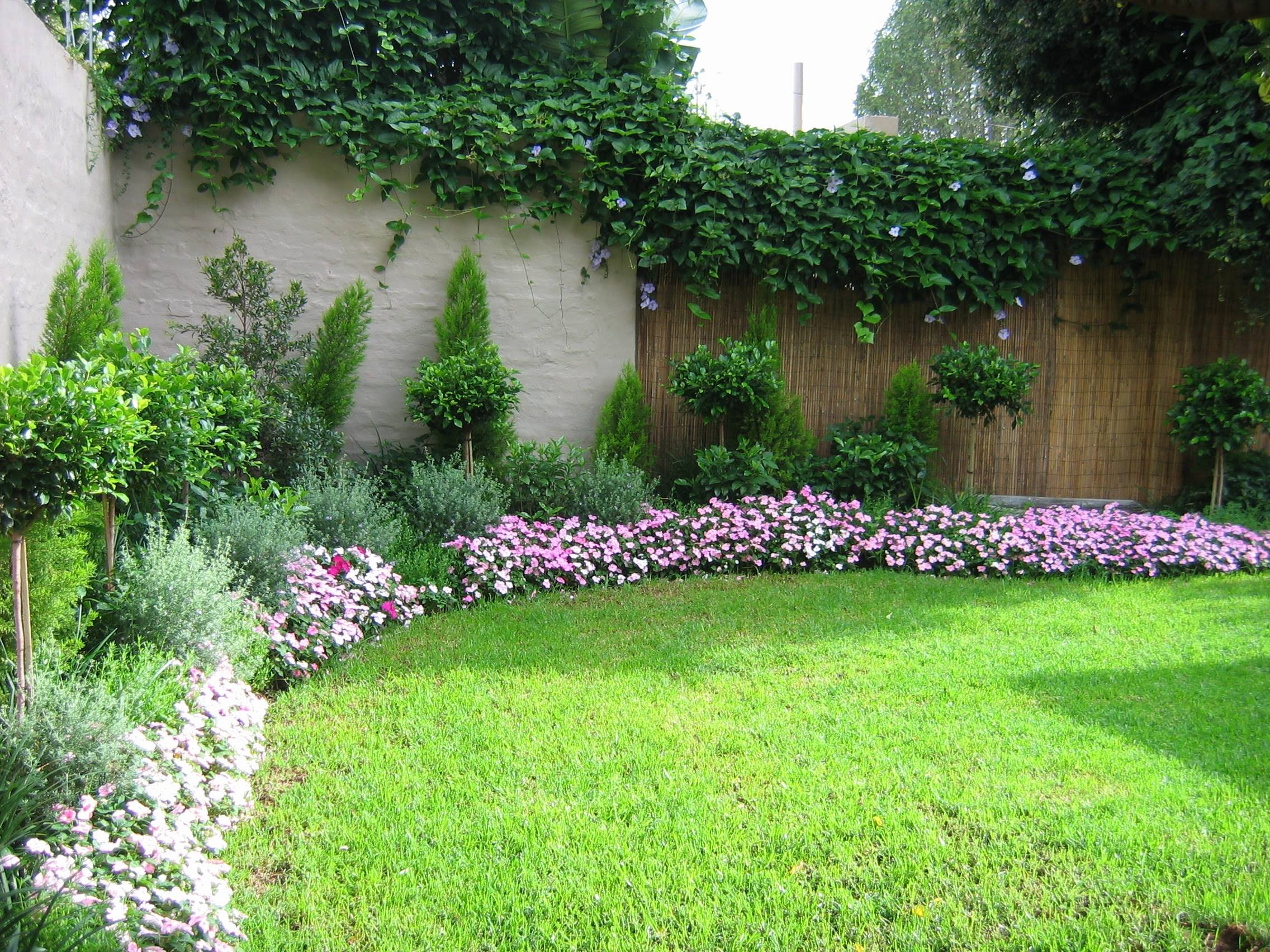 Simple Home Landscaping Ideas