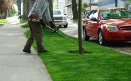 Lawn Care Overland Park
